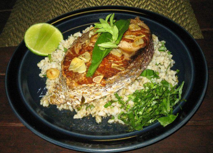 grilled-rusty-jobfish-on-rice