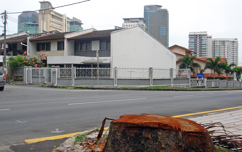 street-tree-cut-down-kuala-lumpur