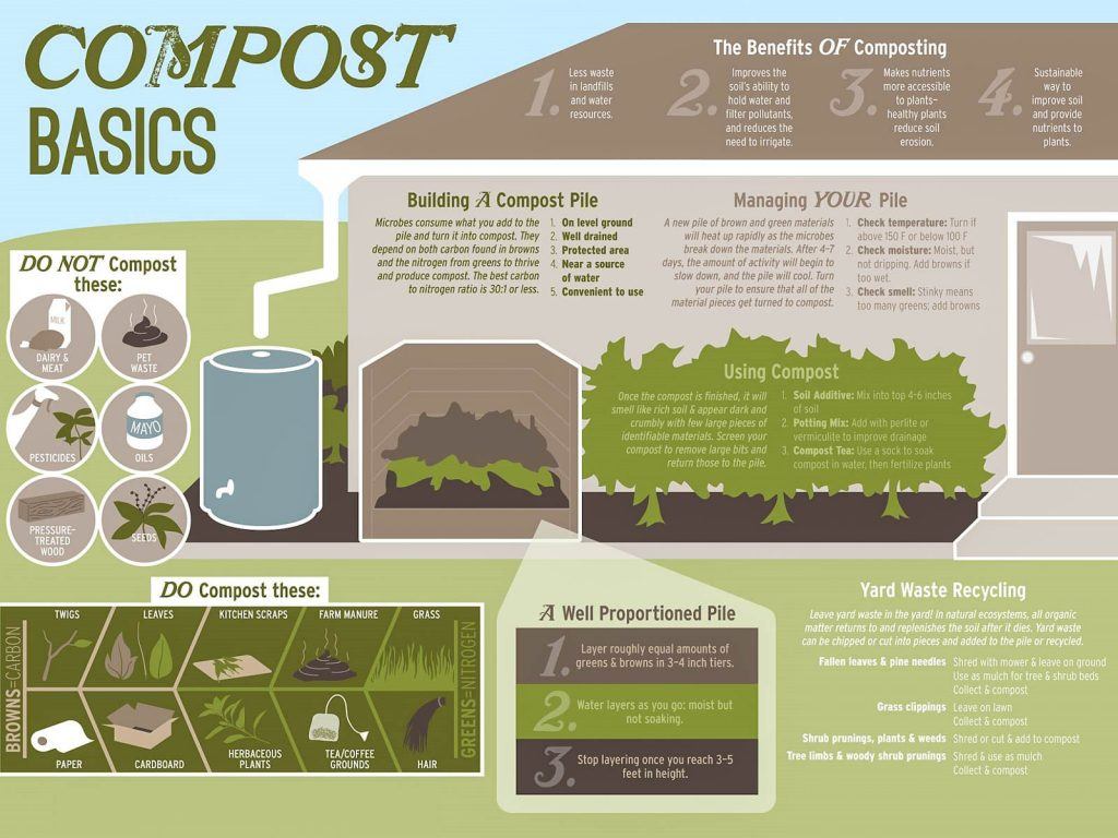 compost-basics-diagram