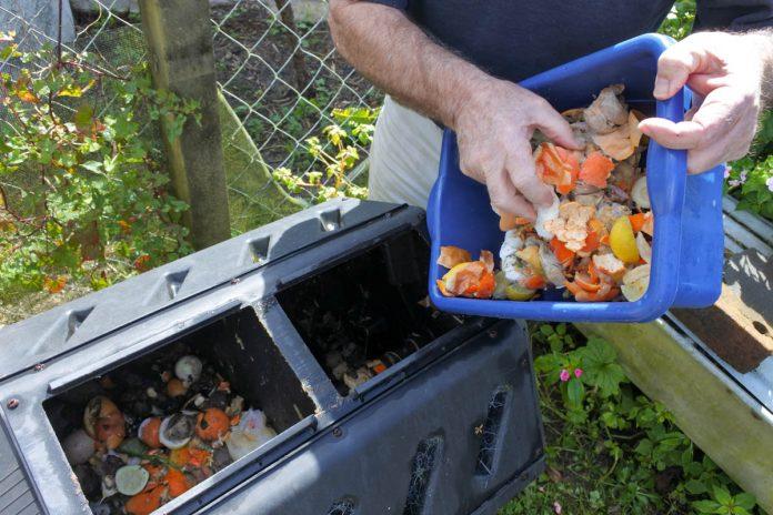 compost-bin-plastic-tropics
