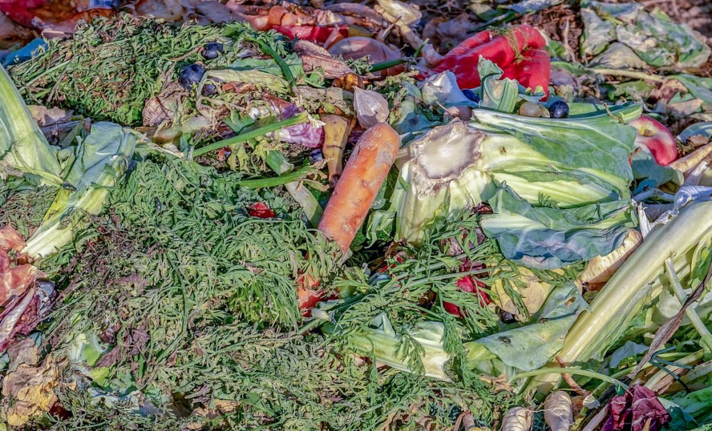 compost-vegetable-scraps