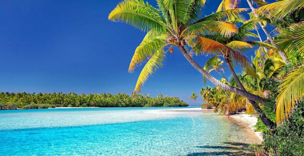 cook-islands-water-coconut-palms