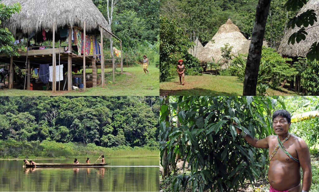 embera-indian-village-panama-homes-lake