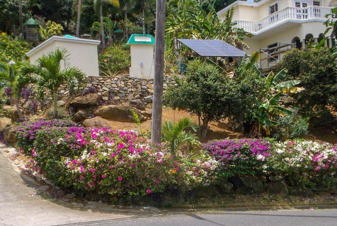 tropical-garden-on-slope