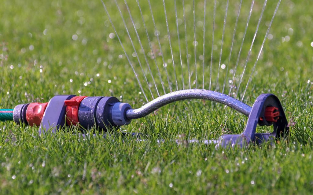 tropical-plant-foods-watering-lawn
