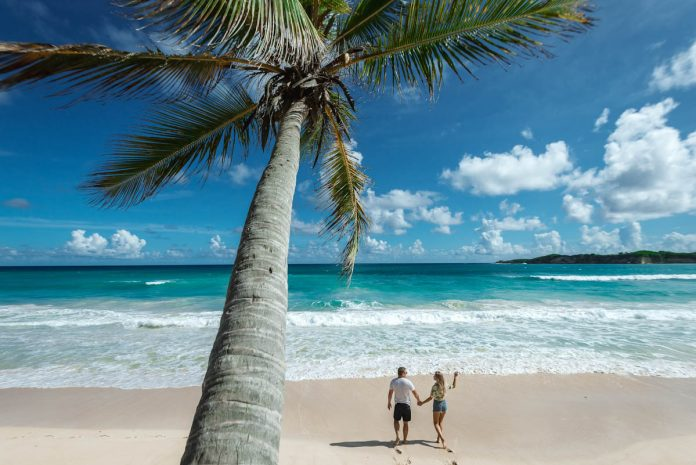 tropics-beach-sea-palm-couple