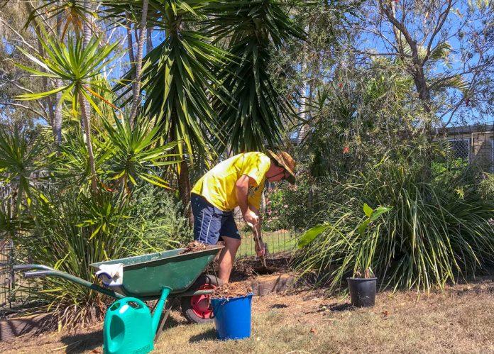 mulching-tropical-garden-bed